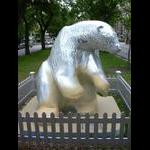 Bears on Broadway: Aurora Bearealis - Arctic Reflections